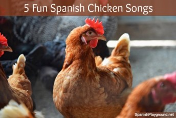 Spanish chicken song favorites to sing with kids learning language.