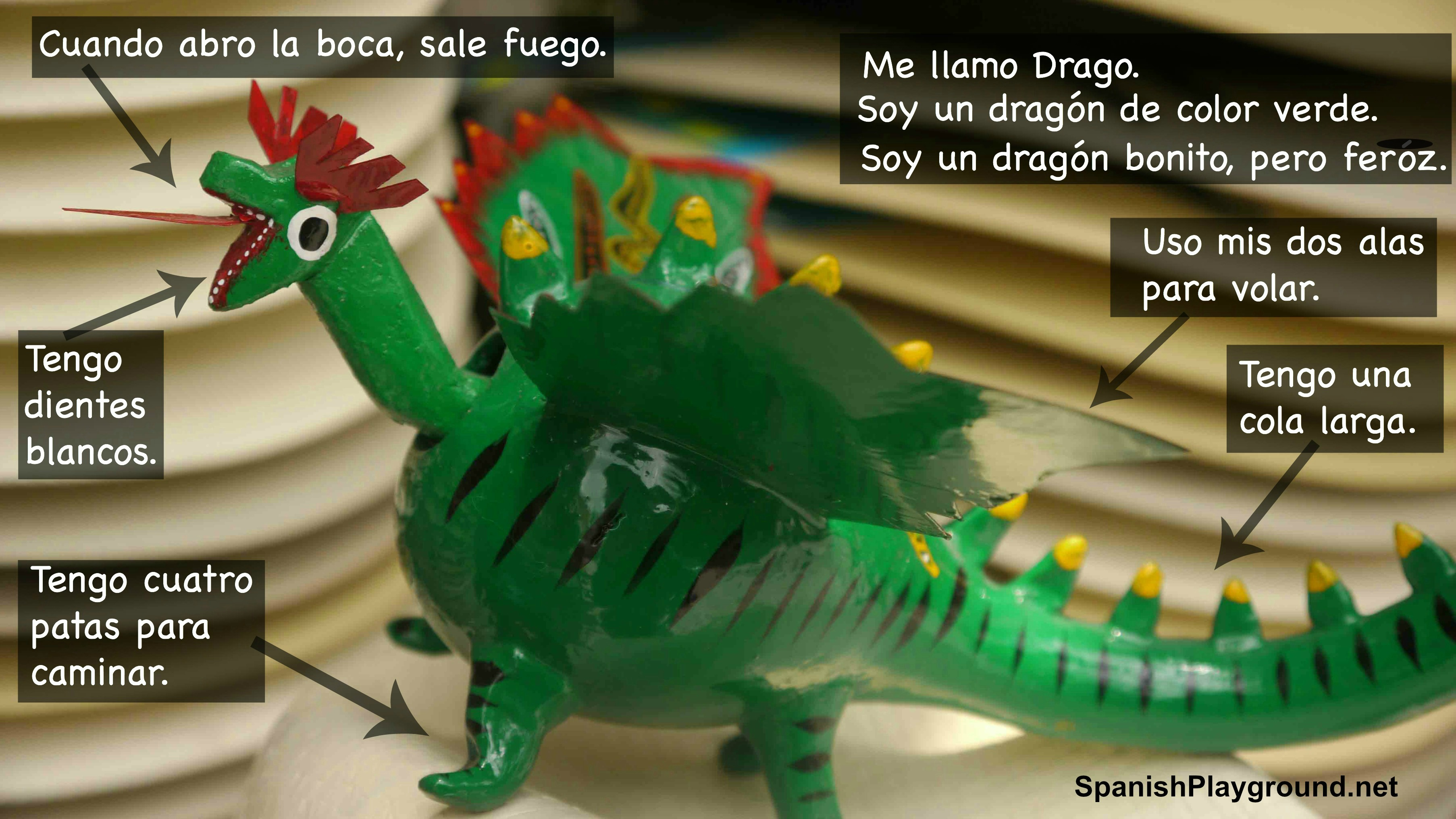 Spanish Reading Comprehension: Dragon Photo - Spanish Playground
